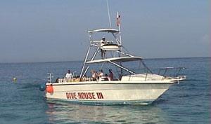 Dive House III